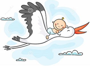 stork carrying baby happy 44759998